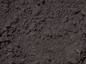 Michigan Peat Dirt Northville