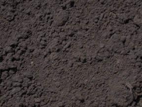 Michigan Peat Dirt Northville