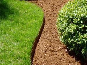Natural Landscape Edging