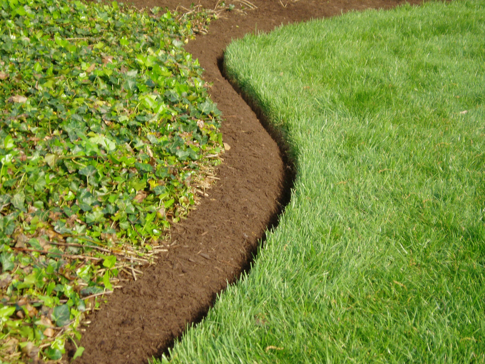 The best landscape edging to install around your flower for Mulch border ideas