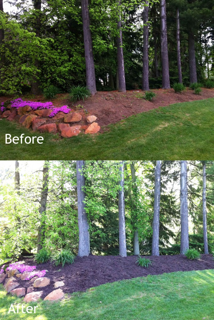 Mulch Installation Before and After